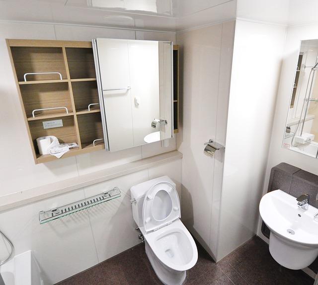 W co należy wyposażyć toalety?